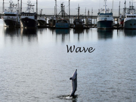 Wave (Photo courtesy of Marianna Boorman)